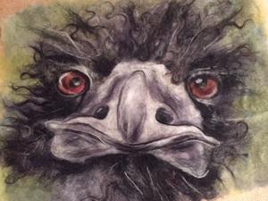 Ostrich - 'Selfie'