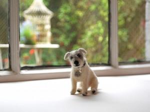 Felted dog created using Manx Loaghtan wool