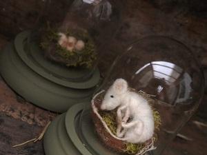 The Nestlings