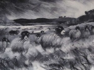 Felted rams racing in the storm