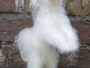 Small white felted dog jumping