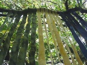 Mixed green felt haning from the tree