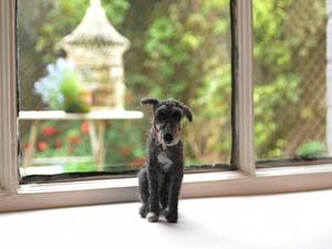 Grey felted dog
