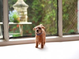 Felted dog on window ledge