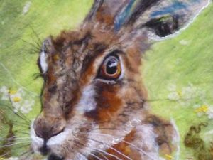 Hare in the field