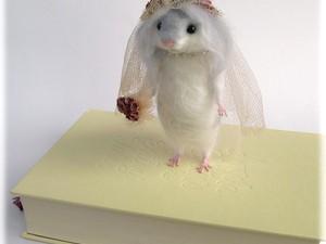 Felt mouse bride