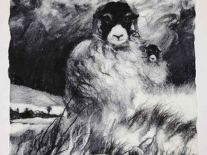 Black and white felted sheep in storm