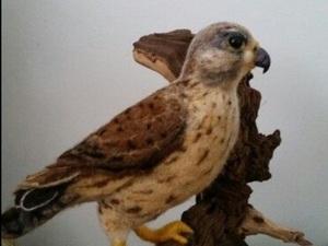 The Bird Core Wool And Merino Roving