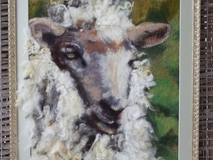 Close up of sheep with fleece overlapping frame