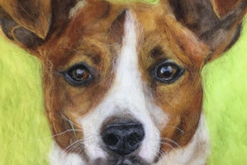 Tutorial of the month - How to make a pet portrait