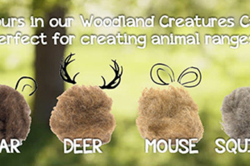 What Can This Do? Woodland Creatures Carded Wool Range